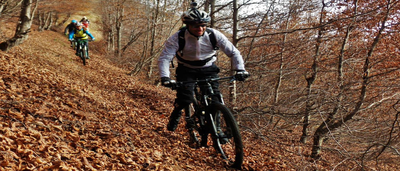 MOUNTAIN BIKE GUIDES AND INSTRUCTORS SERVICE