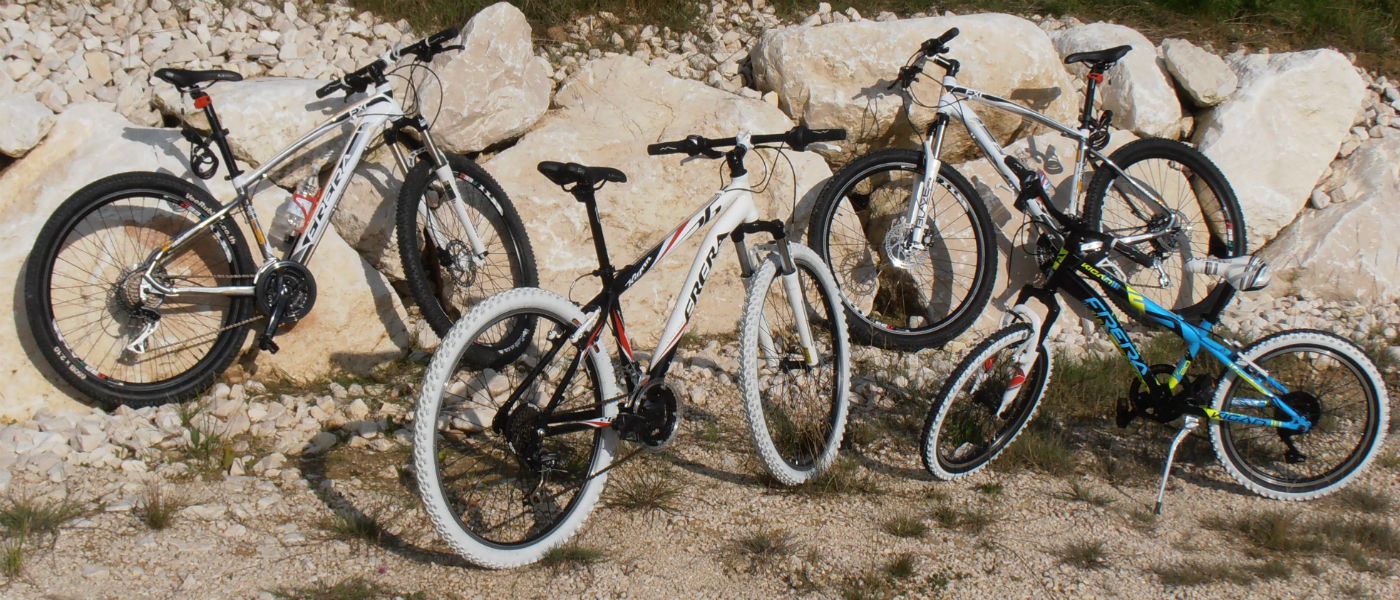 BIKE RENTAL POINT IN ALPAGO AND BELLUNO