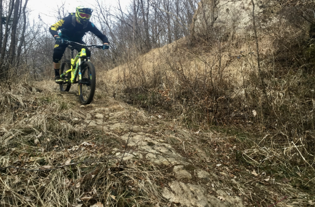 MAESTRO MOUNTAIN BIKE ENDURO